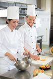 Happy chef with beautiful smiling female assistant at kitchen. Happy stock image