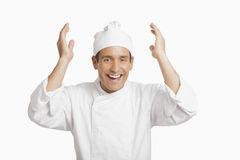 Happy chef. Isolated in white background royalty free stock photos