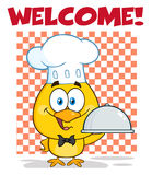 Happy Chef Yellow Chick Cartoon Character Holding A Cloche Platter Holding A Platter Stock Photos