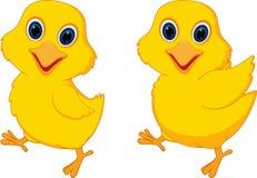 Happy chick cartoon Stock Photos
