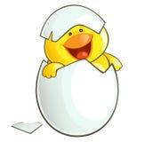 Happy Chicken Royalty Free Stock Photo