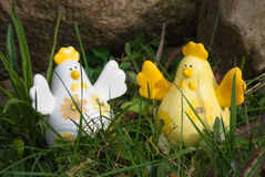 Happy chickens. In spring Royalty Free Stock Photo