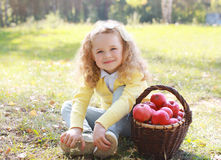 Happy child and autumn basket with apples sitting outdoors. In sunny day stock image