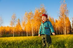Happy child in autumn park Stock Photos