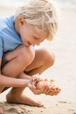 Happy child at beach collecting sea shells. Happy, smiling child collecting sea shells at beach. Focus on shells Stock Photo