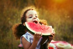 Happy child with big red slice of watermelon sitting on green grass in summer park. Healthy eating concept. Cute curly girl. Happy child with big red slice of Royalty Free Stock Images
