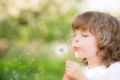 Happy child blowing dandelion. Outdoors in spring park Royalty Free Stock Photo