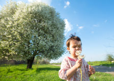 Happy child blowing dandelion outdoors in spring stock photo