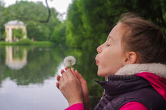 Happy child blowing dandelion outdoors in spring park. A Happy child blowing dandelion outdoors in spring park Stock Images