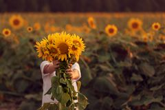 Happy child with bouquet of beautiful sunflowers in summer sunflower field on sunset. Mother day. Concept royalty free stock photo