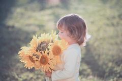 Happy child with bouquet of beautiful sunflowers. Sunny day, summer vacation. cute little girl with yellow sunflowers, outdoor portrait stock photography