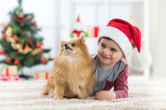 Happy child boy enjoying playing with new dog puppy at christmas. stock image