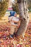 Happy child boy is playing with leaves in autumn park. Royalty Free Stock Images