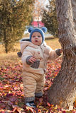 Happy child boy is playing with leaves in autumn park. Royalty Free Stock Image