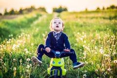 Happy child boy in a summer dandelion field riding