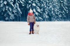 Happy child boy walking with white Samoyed dog in winter day stock images