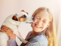 Happy child with dog. Portrait girl with pet. Jack Rassell licks a teen Stock Photography
