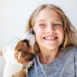 Happy child with dog royalty free stock photography