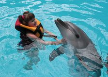Happy child and dolphins in blue water. Dolphin Assisted Therapy.  royalty free stock photography