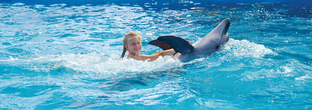 Happy child and dolphins in blue water. Stock Photos