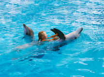 Happy child and dolphins in blue water. Dolphin Assisted Therapy. Child and dolphins in blue water. Dolphin Assisted Therapy stock photo