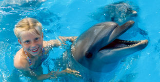 Happy child and dolphins in blue water. Dolphin Assisted. Therapy stock photo