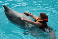Happy child and dolphins in blue water. Dolphin Assisted Therapy.  stock photos