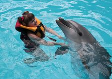 Happy child and dolphins in blue water. Dolphin Assisted Therapy.  stock photography