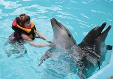 Happy child and dolphins in blue water. Dolphin Assisted Therapy.  royalty free stock photos
