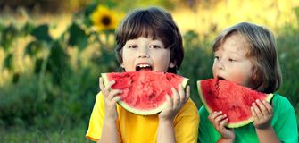 Happy child eating watermelon in garden. Two boys with fruit in. Happy child eating watermelon in the garden. Two boys with fruit in park royalty free stock image