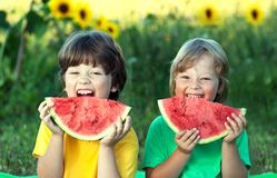 Happy child eating watermelon in garden. Two boys with fruit in park royalty free stock photos