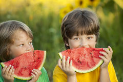 Happy child eating watermelon in garden. Two boys with fruit in Royalty Free Stock Image