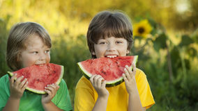 Happy child eating watermelon in garden. Two boys with fruit in Royalty Free Stock Images