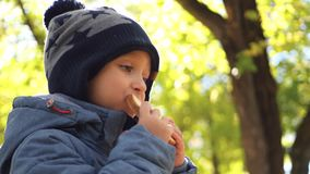 Happy child eats bread outdoors. Family vacation and picnic. stock footage