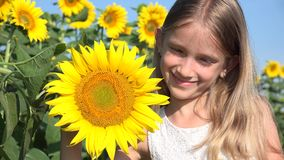 Happy Child Face in Sunflower Field, Smiling Girl Portrait Playing Outdoor 4K.  stock footage