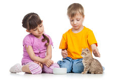 Happy child feeding kitten Royalty Free Stock Photos