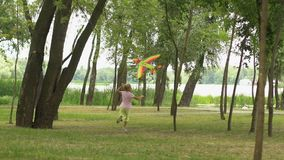 Happy child flying kite in park, health, harmony with nature, values of life. Stock footage stock video