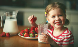 Happy child girl drinks milk and eats strawberries in summer hom. Happy child girl drinks milk and eats strawberries in the summer home kitchen Royalty Free Stock Photography