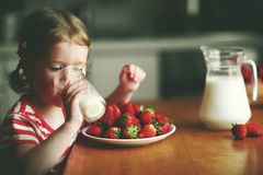Happy child girl drinks milk and eats strawberries in summer hom. Happy child girl drinks milk and eats strawberries in the summer home kitchen Royalty Free Stock Photo