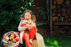Happy child girl harvesting apples in autumn garden. Seasonal outdoor rural activity Royalty Free Stock Photography