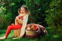 Happy child girl harvesting apples in autumn garden. Seasonal outdoor rural activity Stock Photos