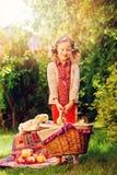 Happy child girl harvesting apples in autumn garden. Seasonal outdoor rural activity Royalty Free Stock Images