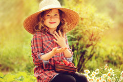 Happy child girl in hat and plaid dress picking strawberries on sunny country walk. In garden Royalty Free Stock Image