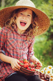 Happy child girl in hat and plaid dress picking strawberries on sunny country walk. In garden Royalty Free Stock Photo