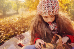 Happy child girl in knitted scarf and sweater with basket on autumn walk in forest eating apples Royalty Free Stock Photography