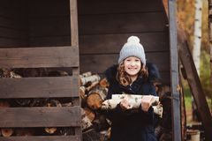 Happy child girl picking firewood from shed in winter Royalty Free Stock Images
