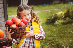 Happy child girl picking fresh apples on the farm. Country living concept. Growing fruits on farm Stock Image