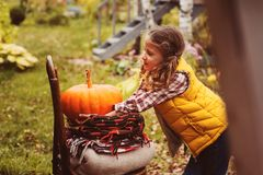 happy child girl picking fresh pumpkins on the farm. Stock Photography