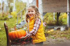 Happy child girl picking fresh pumpkins on the farm. Country living concept Royalty Free Stock Photo