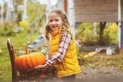 Happy child girl picking fresh pumpkins on the farm. Country living concept, growing vegetables on farm Royalty Free Stock Photography